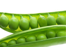 Snap Peas. Fresh sugar snap peas on the pods isolated on white Stock Images