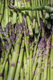 Snapped asparagus. Fresh snapped asparagus for sale at the local farmers market Stock Photo