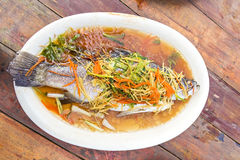 Snapper steamed in soy sauce Stock Images