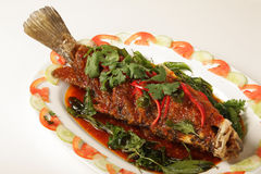 Snapper topped with chili Royalty Free Stock Photo