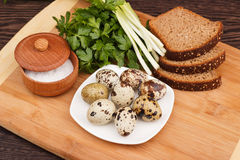 Snapshot of quail eggs Stock Photos