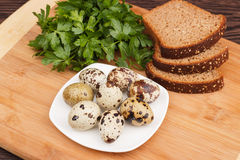 Snapshot of quail eggs Royalty Free Stock Photography