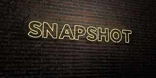 SNAPSHOT -Realistic Neon Sign on Brick Wall background - 3D rendered royalty free stock image Royalty Free Stock Photo
