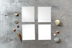 Snapshots templates arranged on rustic wooden background with seashells around Stock Photo