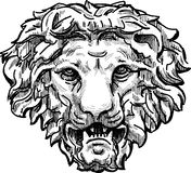 Snarling lion head. Vector drawing of a the antique architectural detail in form of the lion head Royalty Free Stock Images