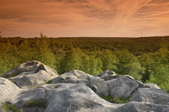 Snastone in fontainebleau forest stock photography
