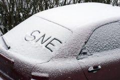 Sne na śniegu Obraz Royalty Free