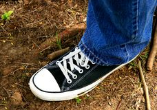Sneaker. A black sneaker over the grass Royalty Free Stock Photo