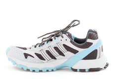 Sneaker isolated stock image