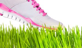 Sneaker stepping on grass Royalty Free Stock Photography