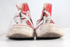 Sneakers. Casual red shoes on white background Stock Photos