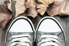 Sneakers and autumn leaves. Studio shot of a pair of sneakers on wooden background with some autumn leaves Stock Images