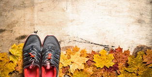 Sneakers on autumn leaves. Stock Image