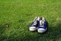 Sneakers on Grass. Old, slightly work sneakers on grass Stock Photo