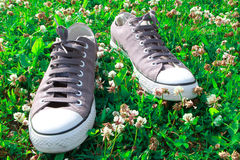 Sneakers on grass Stock Photos