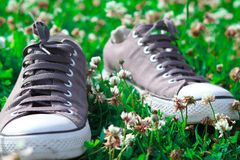 Sneakers on grass Royalty Free Stock Photography
