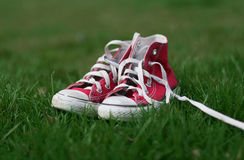 Sneakers in the grass. Red high top sneakers in the grass royalty free stock image