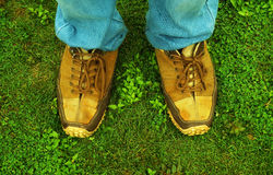 Sneakers on grass Royalty Free Stock Photo