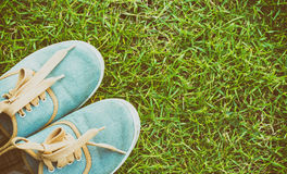 Sneakers on grass, top view, vintage style Royalty Free Stock Image