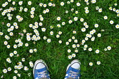 Top view on sneakers on green grass
