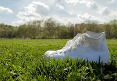 Sneakers in the grass. White high top sneakers in the grass Stock Photos