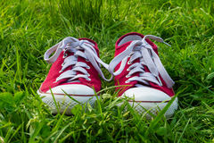 Sneakers on green grass, spring walk. Stock Images