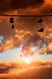 Sneakers hanging at sunset Royalty Free Stock Photos