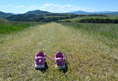 Sneakers on mountain road Stock Photography