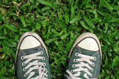 Sneakers, odgórny widok Bawi się sneakers od widok z lotu ptaka na trawy polu, zieleń, Odgórny widok obrazy royalty free