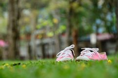 Sneakers pink Stock Photos