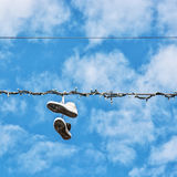 Sneakers on the power line Stock Images