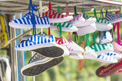 Sneakers   shoes multicolored Stock Photos