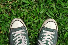 Sneakers, top view. Sport sneakers from an aerial view on grass field, Green, Top view. Sport sneakers from an aerial view on grass field, Green, Top view royalty free stock images