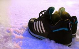 Sneakers w śniegu fotografia stock