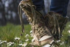 Sneakers w kwiat łące! Zdjęcia Stock