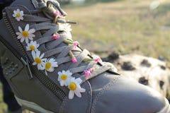 Sneakers w stokrotkach Zdjęcie Royalty Free