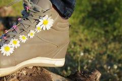Sneakers w stokrotkach Zdjęcie Stock