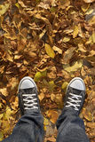 Sneakers with yellow leaves around Royalty Free Stock Image