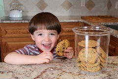 Free Sneaking A Cookie Royalty Free Stock Photography - 13997817