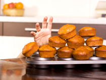 Sneaking cookies. And domestic kitchen Royalty Free Stock Photo