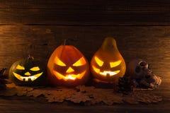 Sned Halloween pumpor Arkivfoton