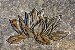 Sned Lotus Flower royaltyfria bilder