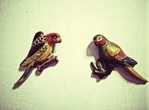 Sned träfåglar som målas på murbrukväggar Arkivbild
