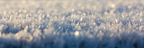 Sneeuw Stock Foto's