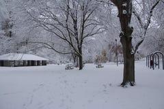 Sneeuw afgedekt park Royalty-vrije Stock Fotografie