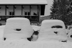 Sneeuw afgedekte auto's Stock Foto