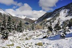 Sneeuw afgedekte bergen Royalty-vrije Stock Fotografie