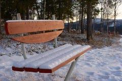Sneeuw bank Royalty-vrije Stock Foto's
