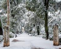 Sneeuw beboste steeg met ruïnes Royalty-vrije Stock Fotografie