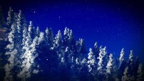 Sneeuw behandeld Christmac-bos in bergen het 3d teruggeven Stock Foto
